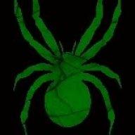Gartenspinnen