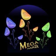 MegaMan2k
