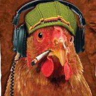 Chicken #420