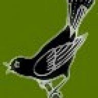 singingcrow