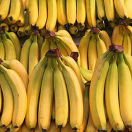 banana_republic